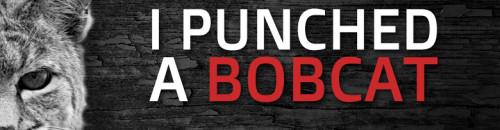 I Punched a Bobcat