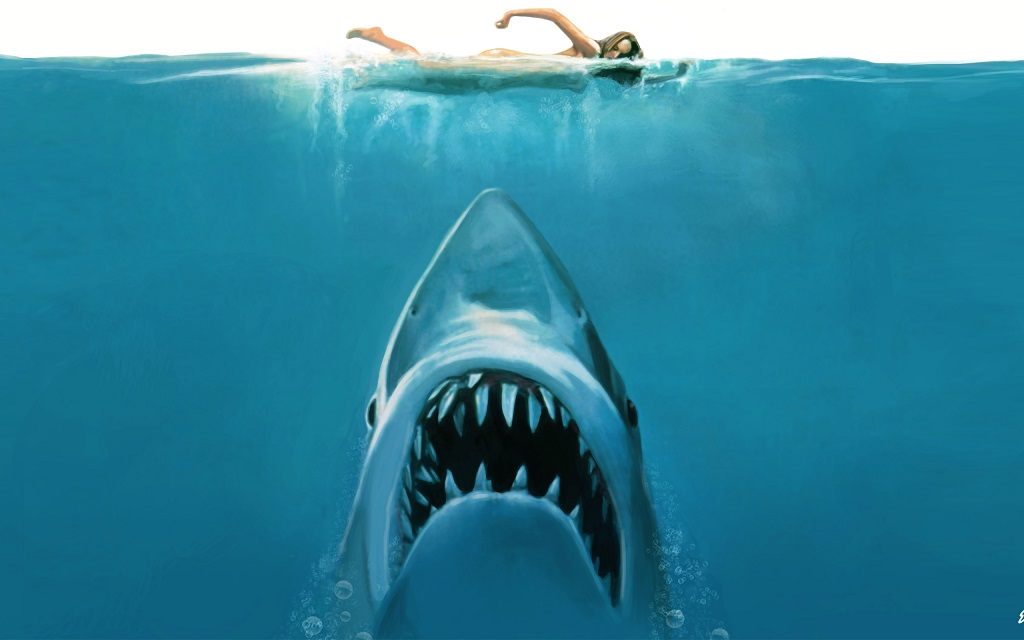 Sketchy Shark
