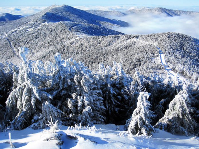 mount mitchell winter 3