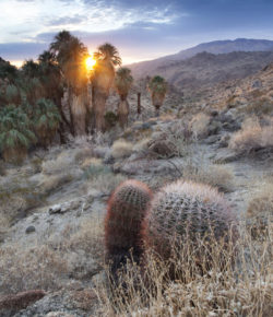 The Desert Adventure Bucket List: 9 Challenges in the 9 Cities of Greater Palm Springs